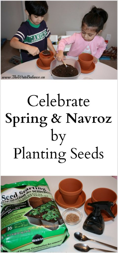 Celebrate Navroz & Spring by planting seeds with the kids