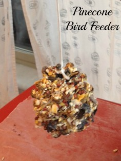 Earthday Birdfeeder Craft