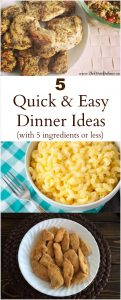 Quick & Easy Meals | 5 Ingredient Dinners