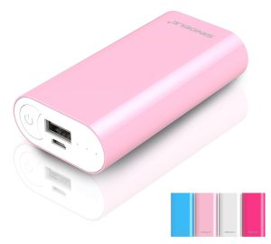 Secret Santa Ideas - portable phone charger