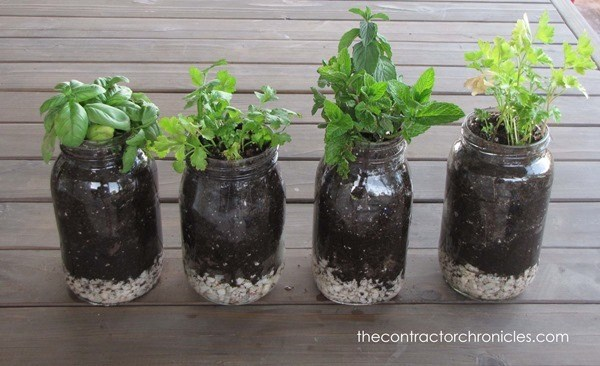 Mason Jar Hacks - herb garden