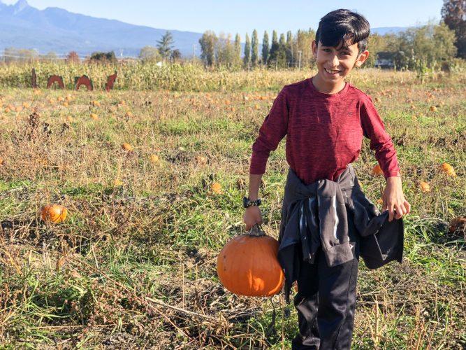 5 Pumpkin Decorating Ideas